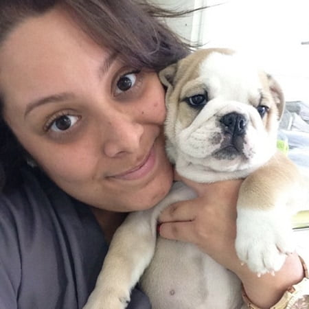 Team member Veronica holding her cute beige and white English Bulldog puppy